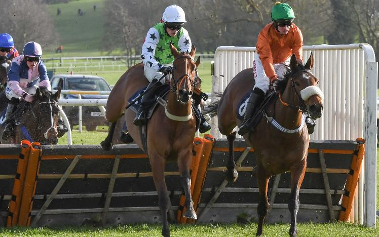 Chepstow and Ffos Las Racing Club horse, Baboin, wins at Uttoxeter Racecourse